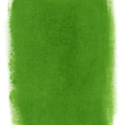 Fabric Paint- Grass Green