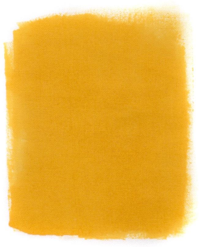Mustard Fabric Paint Arty Crafty
