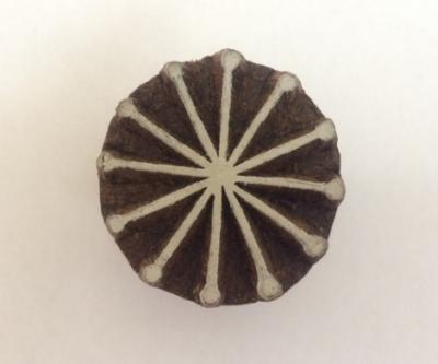 Hand carved Indian wooden printing block- Block printing snowflake