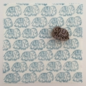 Indian Elephant Block Printing Kit
