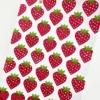Indian Block Printing- Strawberry Design